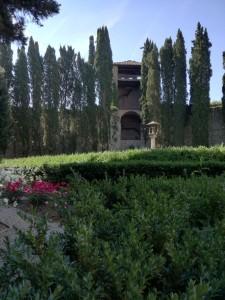 Hotellin puutarhaa / Garden of the hotel